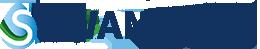Swan Systems Logo
